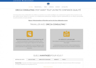 Orccaconsulting_2
